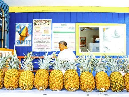 Aloha Hawaii Tours Pineapple Sites Bites