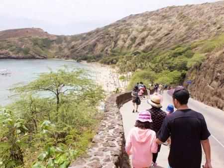 hanauma bay family snorkeling tours