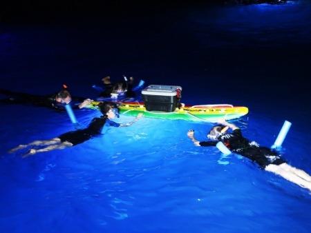 Hawaii Island and Ocean Tours Manta Ray Night Snorkel Pic