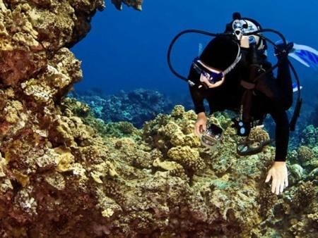 Hawaii Nautical West Oahu Scuba Feature