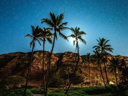 honolulu night sky light painting