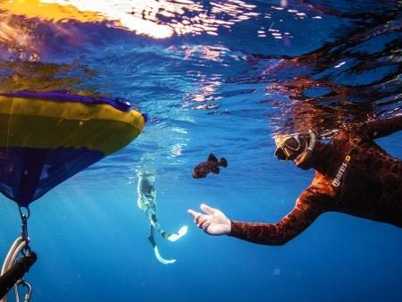 maui spearfishing header