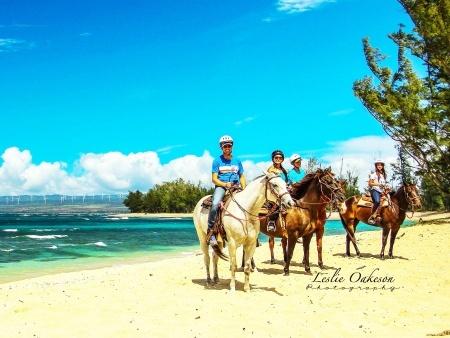 Groups at Oahu Horseback Rides