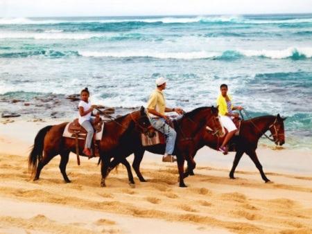oahu horseback riding lessons