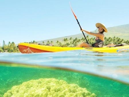 maui kayak tours